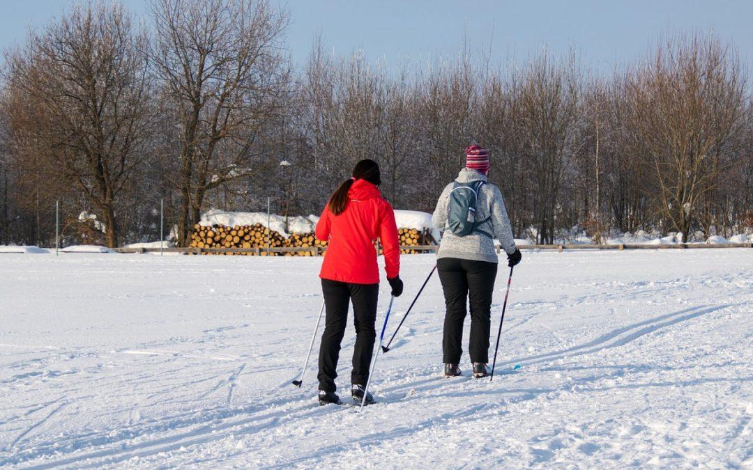 Comment organiser un séjour au ski ?