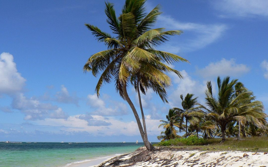 Voyage à Punta Cana : ce qu'il faut savoir avant le départ