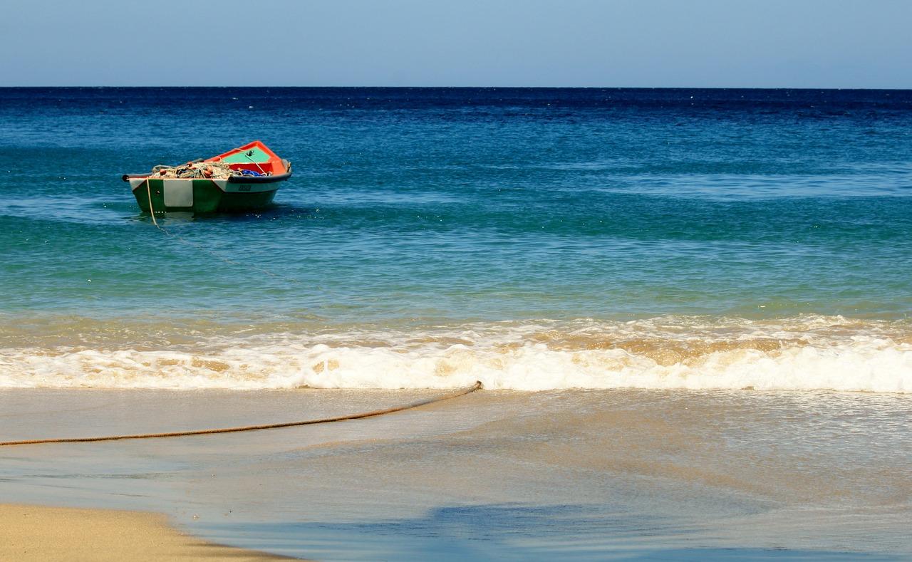 Tout savoir sur la location de voiture en Martinique !